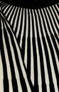 Lewes FEVER Retro Vintage Womens Stripe Skirt