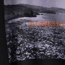 LEVI'S Retro Garment Dyed Beach Photo Tee (Black)